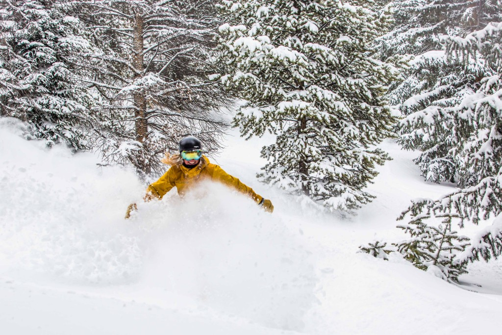 "This is what 10"" of snow in 24 hours looks like"